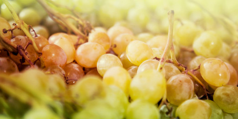 grapes on the counter market