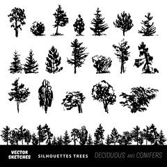Set of vector silhouettes of trees
