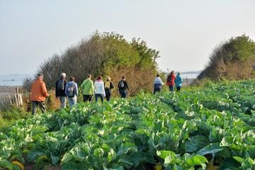 Groupe de randonneurs sur le sentier côtier au niveau de Port-Béni en Bretagne