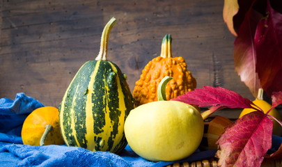 Colorful pumpkins and autumn leafs