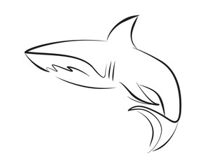 Black line shark on white background. Hand drawing vector graphic.