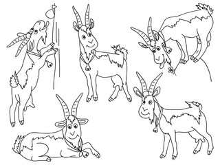 Vector Set of Cute Cartoons Goats
