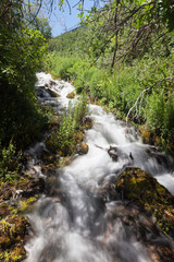 Beautiful view of water falling at Cascade Springs National Park American Fork Canyon