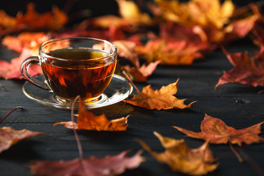 Fall season, leisure time and tea time concept.
