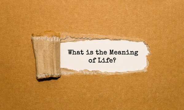 The text What is the Meaning of Life appearing behind torn brown paper