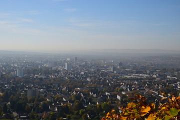 Blick vom Wartberg auf Heilbronn im Herbst mit Weinlaub