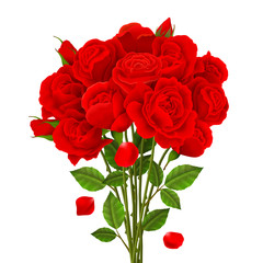 Rose Bouquet Illustration