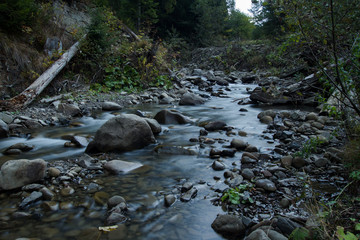 mountain river with stones, forest and rocks background