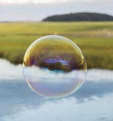 Bubble Floating over Marsh
