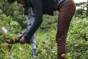 Woman gathers wildflowers for a bouquet