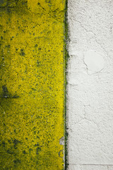 Peeling paint and moss covering building wall exterior