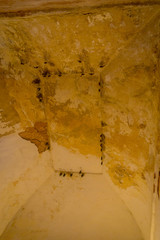 Close up of some bats hanging from the ceiling of a building at outdoors, in Amber Fort near Jaipur, Rajasthan, India