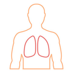 Men's contour with the designation of healthy lungs.