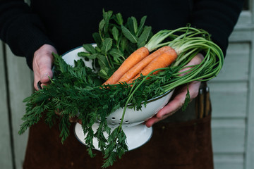 Carrots being held in a colander
