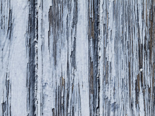 light blue wooden background