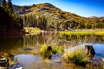 Lily lake in Lake Tahoe, California
