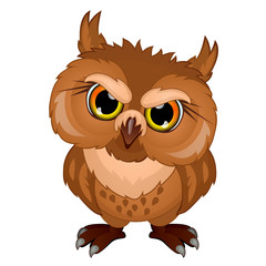 Cartoon owl in evil mood, emotional bird character. Vector isolated on white background