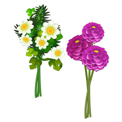 Bouquets of pink peonies and daisies. Vector flower isolated on white background. Illustration in cartoon style