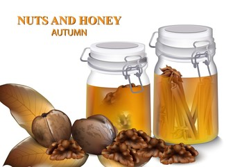Honey and Greek nuts Vector realistic. Autumn flavors details