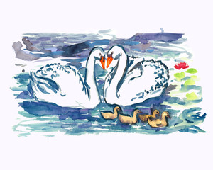 White swans couple with nestlings swimming together on pond, isolated hand painted watercolor illustration