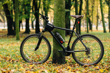 Bicycle in colorful autumn park. Fall season background