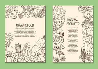 Vector illustration of a flyer with vegetables