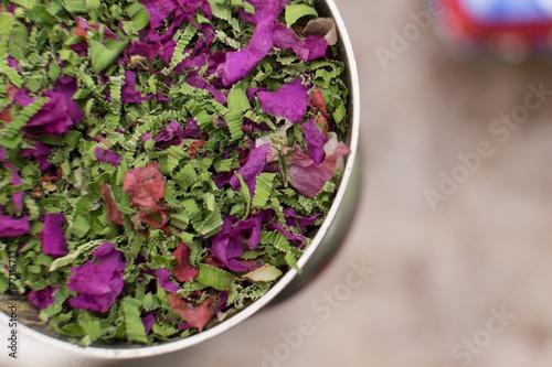 Download 9400 Koleksi Gambar Bunga Rampai Paling Cantik