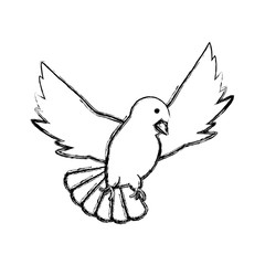 peace dove icon over white background vector illustration