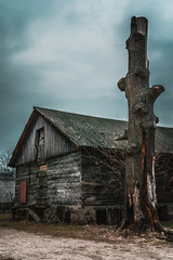 Gloomy house with dead tree