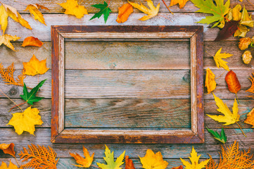 autumn composition. bright autumn leaves and picture frame on wooden background with copy space. mock up for text, congratulations, phrases, lettering