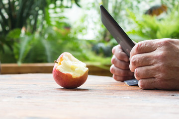 Male hands using tablet computer and bitten apple on wooden table. Winter garden background.