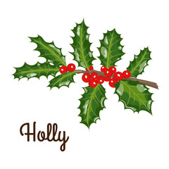 branch of holly