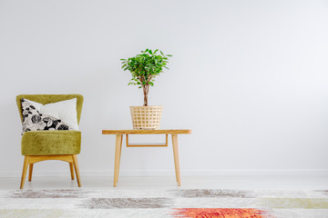 Potted plant in basket