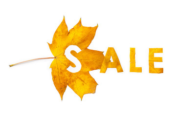 Autumn discounts. Letters carved from wedge leaves