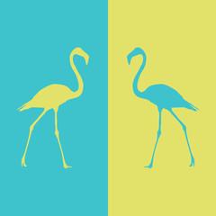 illustration flamingo beautiful