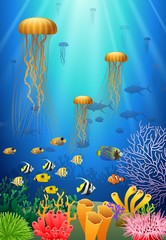 Jellyfish swim in the underwater and coral. Vector illustration