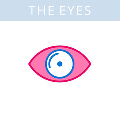The internals outline icon. Eye and eyesight symbols. Viscera and inside organs vector linear pictograms. Thin line medical and anatomy infographic elements for web, presentation, networks.