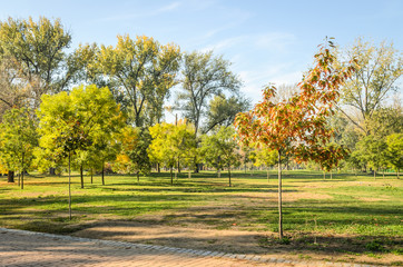 City Park Novi Sad in autumn colors