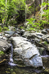 A small waterfall in the forest