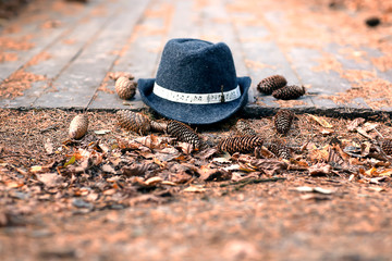 Vintage classic dark grey and blue lady's hat on a wooden floor and pinecones at sunset.  Concept travel, needlework, space for text