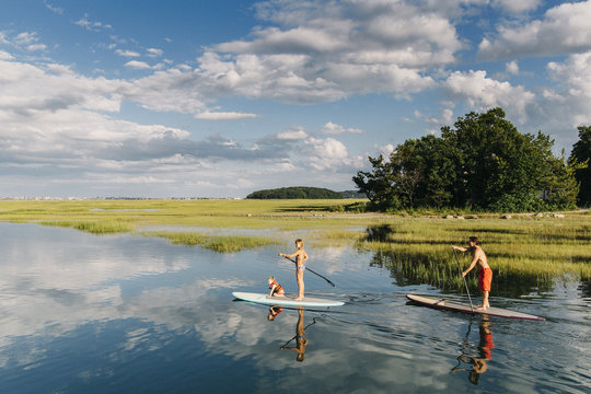 Family on Paddleboards in Marsh