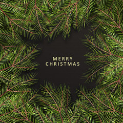 Merry Christmas- phrase. Christmas text on pine tree branches background. New Year promotion placard for shop. Calligraphy lettering text.