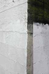 Paint covered wall of building corner, close up