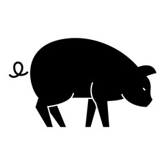 pig  icon, vector illustration, black sign on isolated background