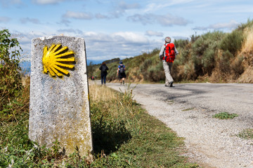The yellow scallop shell signing the way to santiago de compostela on the st james pilgrimage route Wall mural