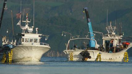 噴火湾の漁船