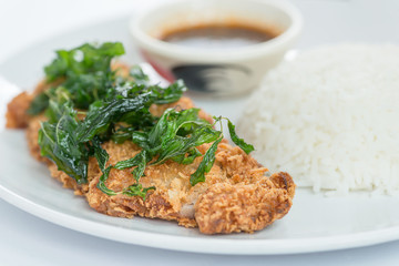 Thai food, Fried chicken with basil crispy and rice. Selective focus.