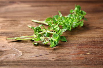 Fresh aromatic oregano on wooden background