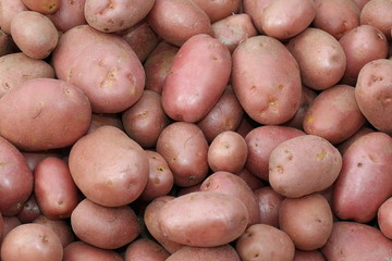 background of many red potatoes a very valuable quality