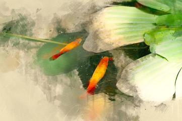 Goldfish swim near water lily. Digital painting of goldfish. Watercolor illustration of goldfish.